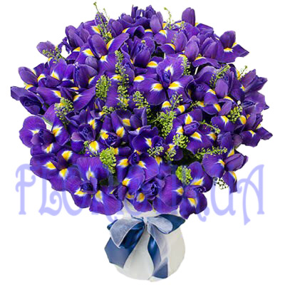 Bouquet Iris ― Floristik — Shop online flower delivery all over Ukraine.