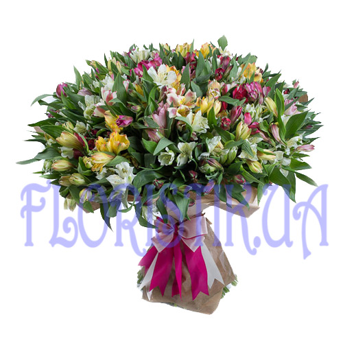 Bouquet 101 alstroemeria ― Floristik — Shop online flower delivery all over Ukraine.
