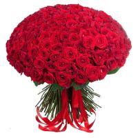 149 red roses