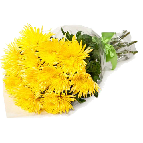 Bouquet of yellow chrysanthemums. Buy Bouquet of yellow chrysanthemums in the online store Floristik