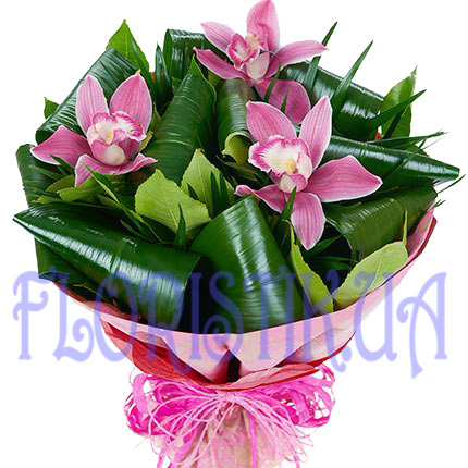 Bouquet of orchids ― Floristik — flower delivery all over Ukraine